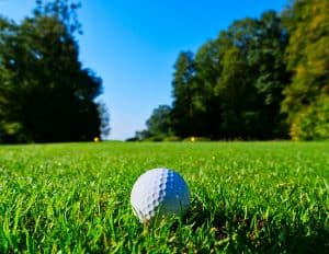 Golf Ball Sitting in