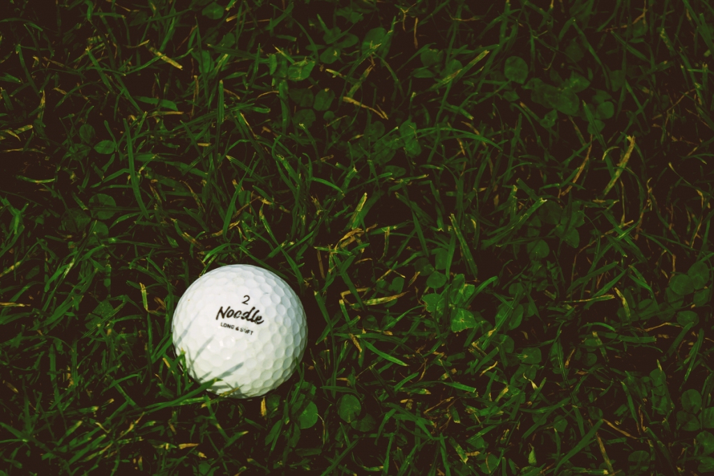 Noodle Golf Ball in Grass